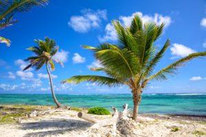 Caribbean coastline