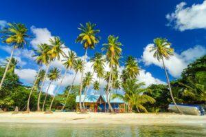 Caribbean Beach Shack